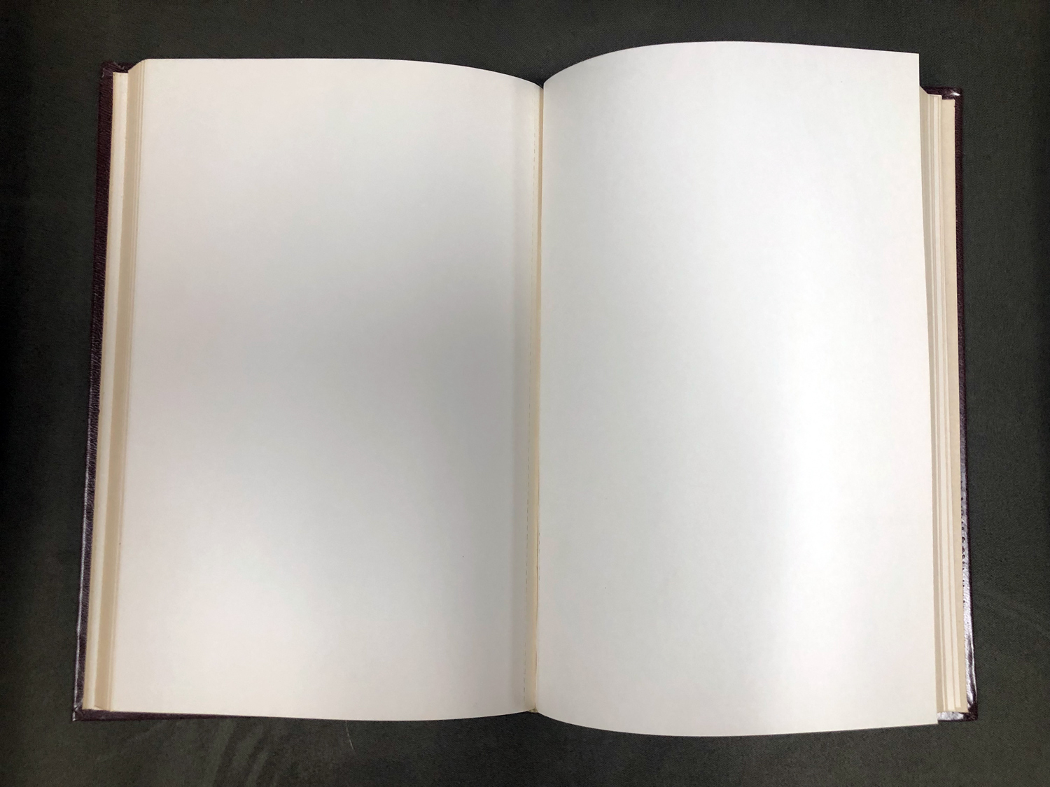 Blank Pages